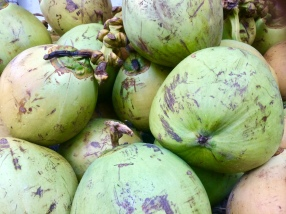 The-Mat-Movement-coconuts-bali