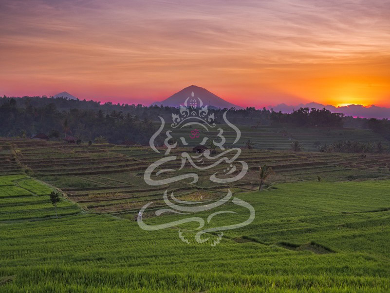 ashtanga-yoga-bali-conference-header-the-mat-movement