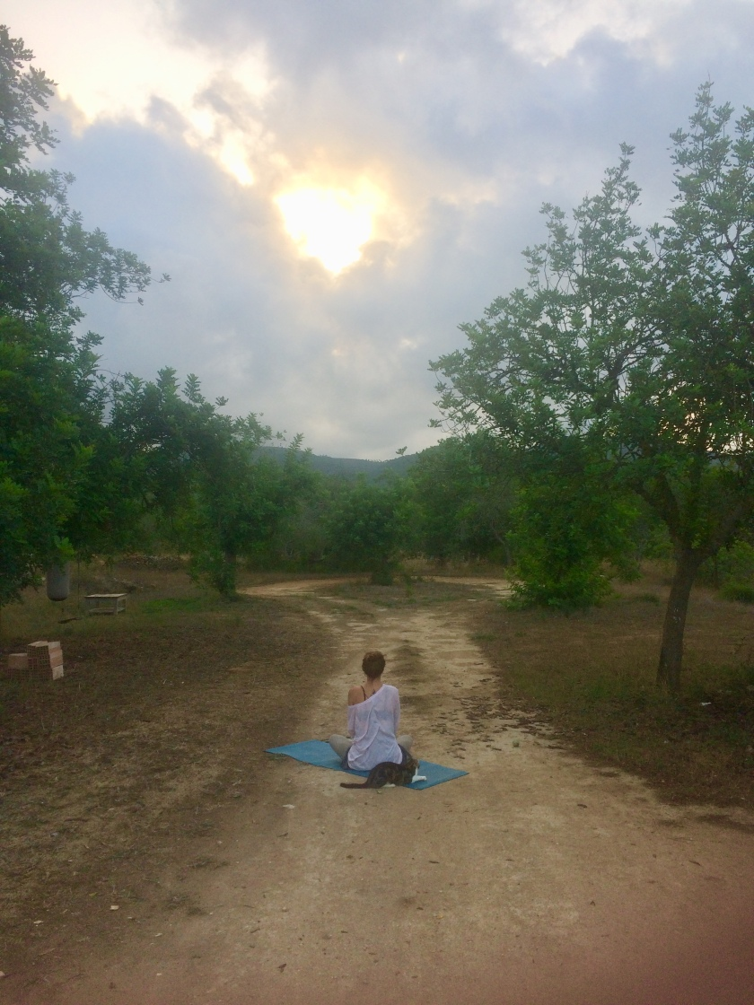 the mat movement yoga retreats